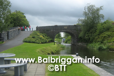 balbriggan_tidy_towns_meet_president_higgins_27jun13